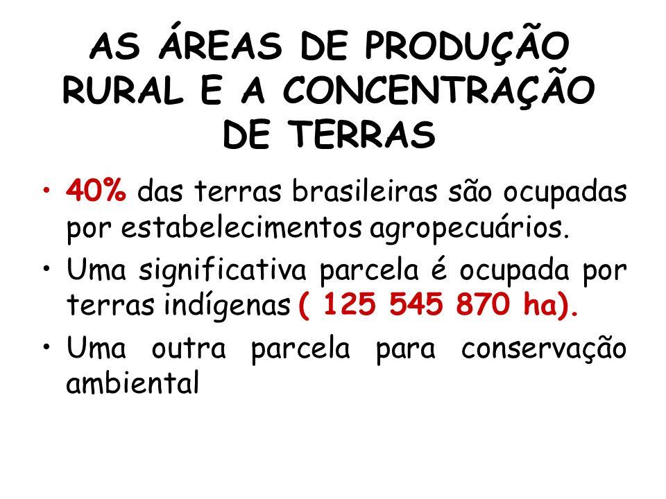 AS ÁREAS DE PRODUÇÃO RURAL E A CONCENTRAÇÃO DE TERRAS
