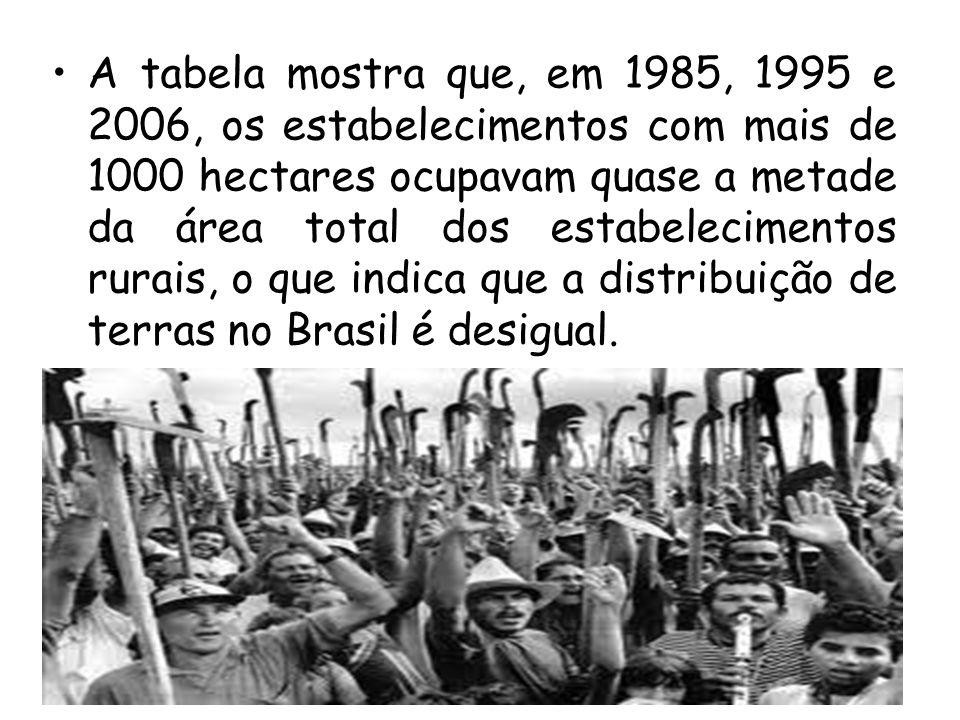A tabela mostra que, em 1985, 1995 e 2006, os estabelecimentos com mais de 1000 hectares ocupavam quase a metade da área total dos estabelecimentos rurais, o que indica que a distribuição de terras no Brasil é desigual.
