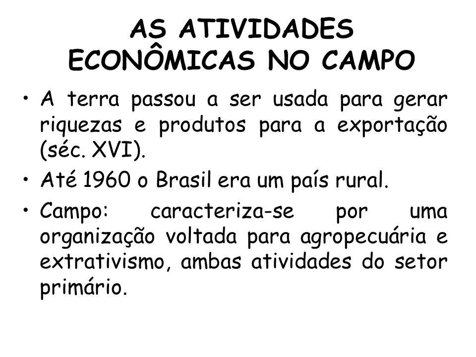 AS ATIVIDADES ECONÔMICAS NO CAMPO