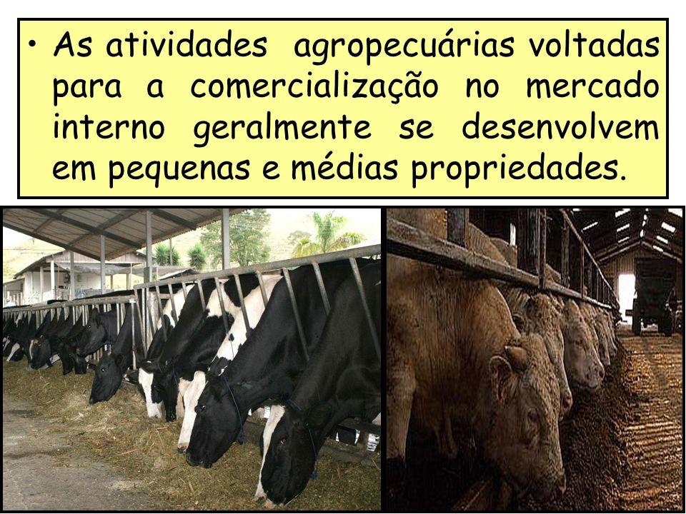 As atividades agropecuárias voltadas para a comercialização no mercado interno geralmente se desenvolvem em pequenas e médias propriedades.