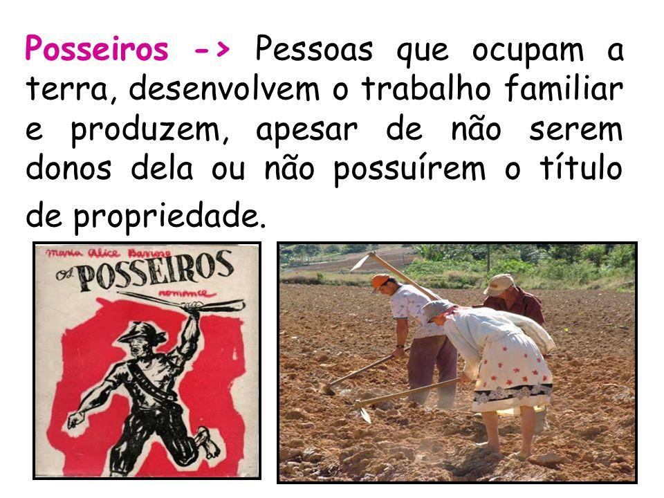 Posseiros -> Pessoas que ocupam a terra, desenvolvem o trabalho familiar e produzem, apesar de não serem donos dela ou não possuírem o título de propriedade.