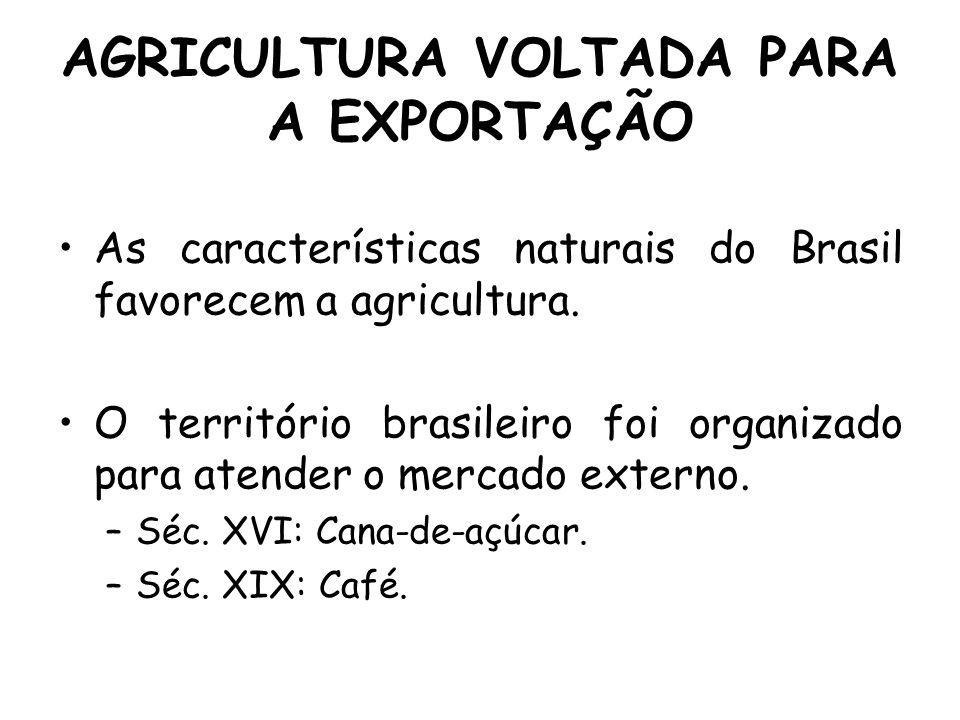 AGRICULTURA VOLTADA PARA A EXPORTAÇÃO