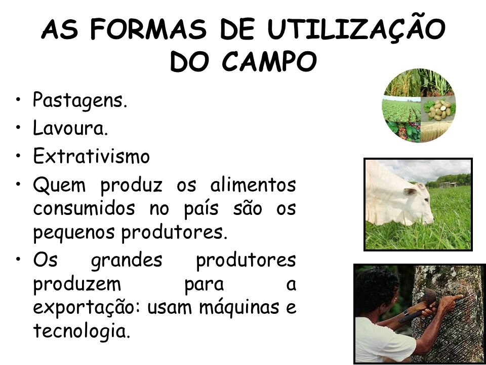 AS FORMAS DE UTILIZAÇÃO DO CAMPO