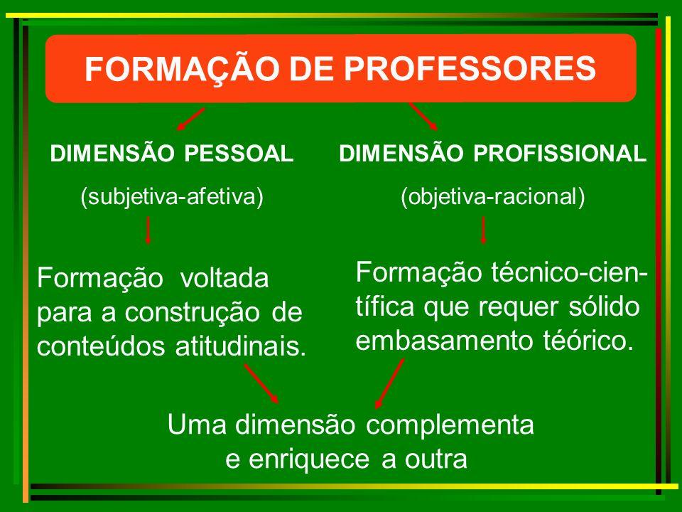 FORMAÇÃO DE PROFESSORES DIMENSÃO PROFISSIONAL