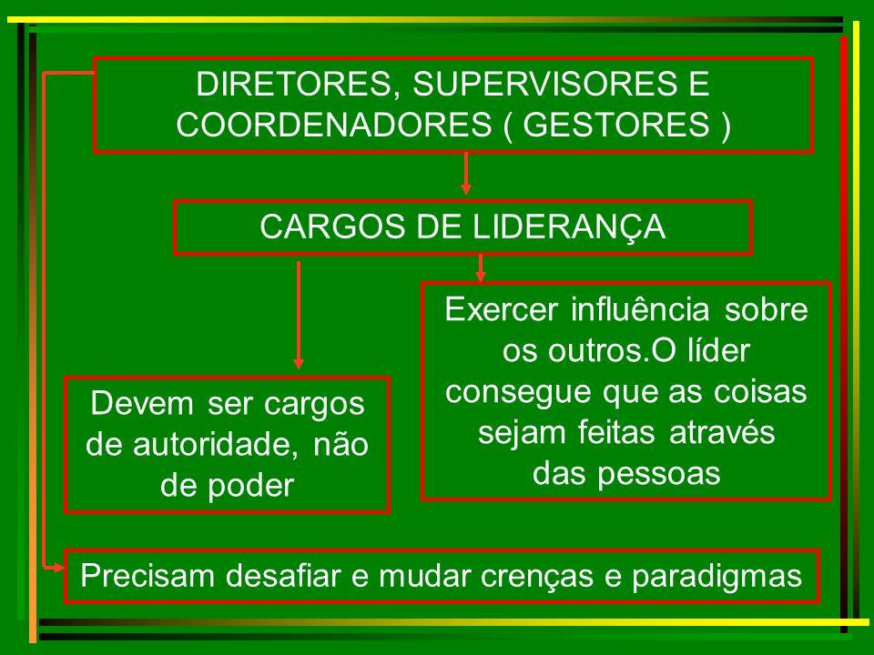 DIRETORES, SUPERVISORES E COORDENADORES ( GESTORES )