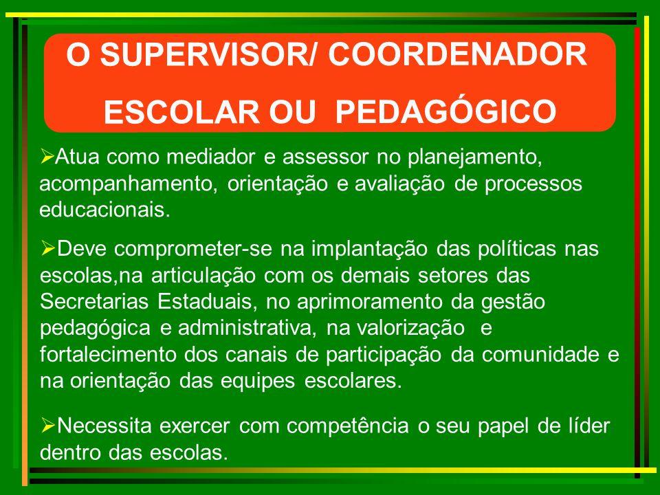 O SUPERVISOR/ COORDENADOR