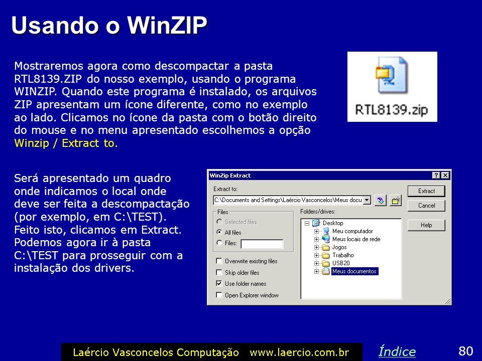 Usando o WinZIP