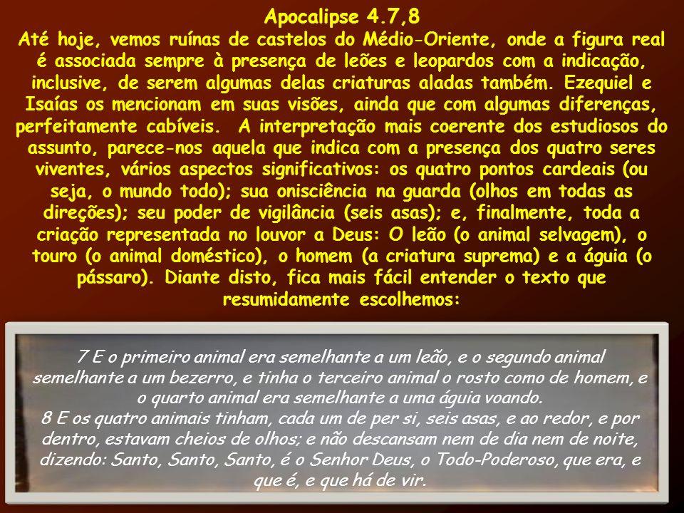 Apocalipse 4.7,8