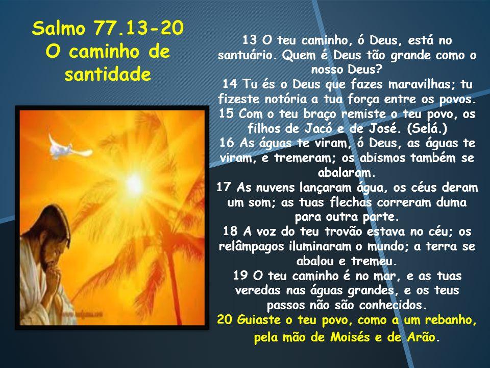 Salmo 77.13-20 O caminho de santidade