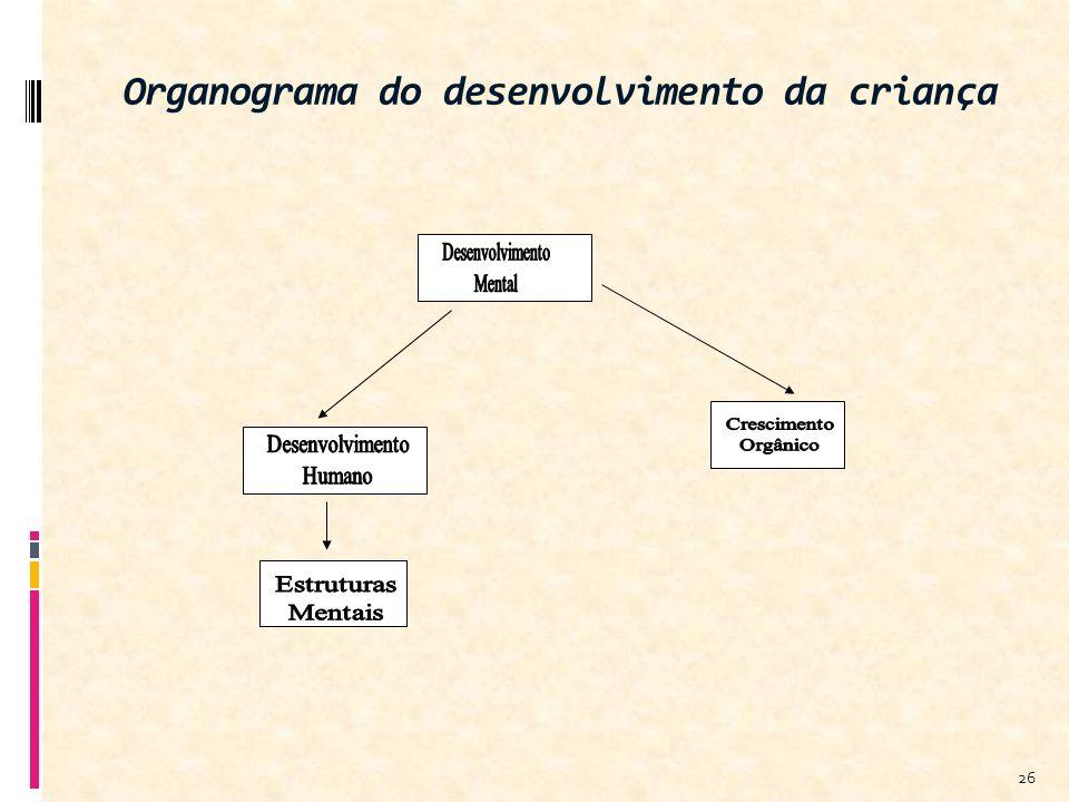 Organograma do desenvolvimento da criança