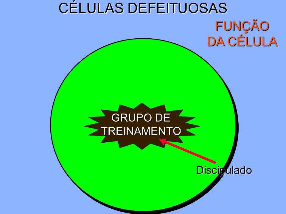 CÉLULAS DEFEITUOSAS FUNÇÃO DA CÉLULA GRUPO DE TREINAMENTO Discipulado