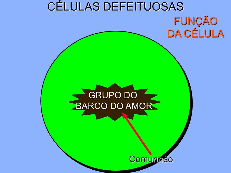 CÉLULAS DEFEITUOSAS FUNÇÃO DA CÉLULA GRUPO DO BARCO DO AMOR Comunhão