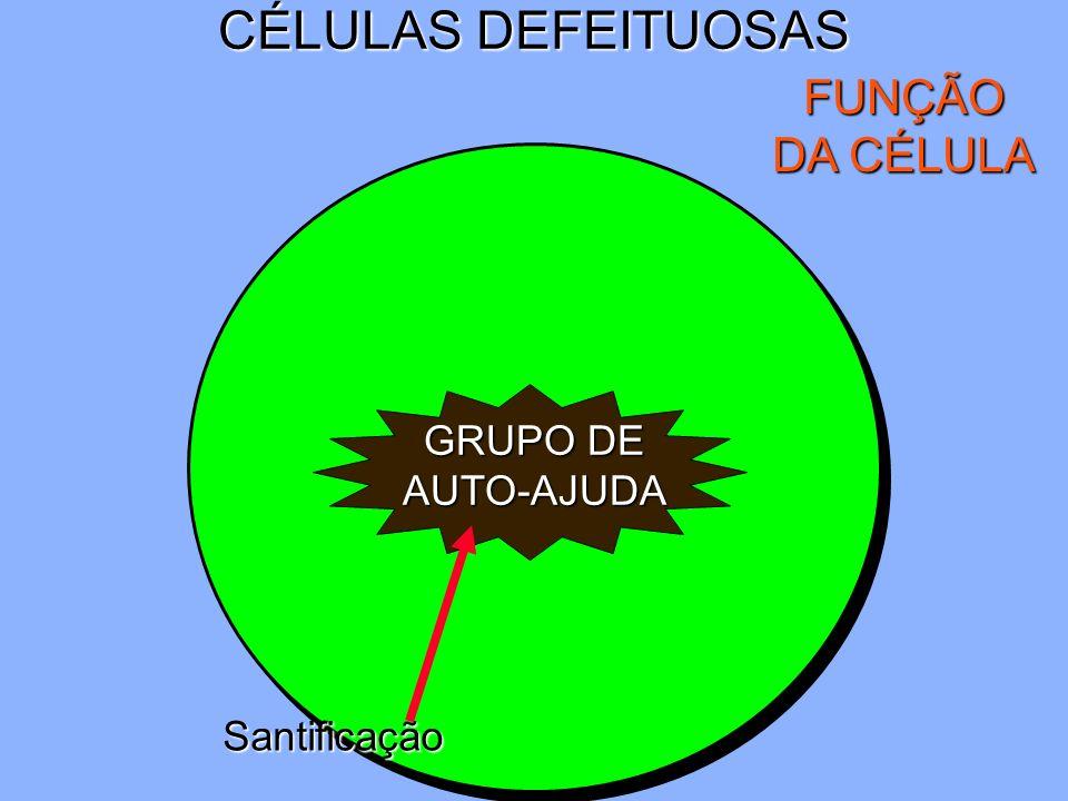 CÉLULAS DEFEITUOSAS FUNÇÃO DA CÉLULA GRUPO DE AUTO-AJUDA Santificação