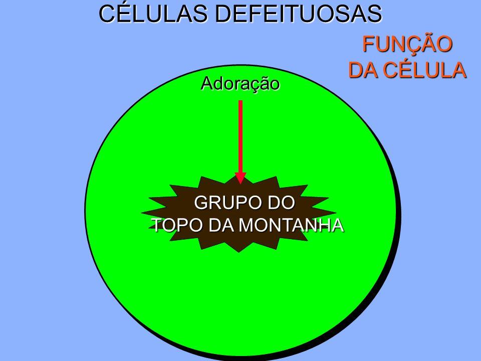 CÉLULAS DEFEITUOSAS FUNÇÃO DA CÉLULA Adoração GRUPO DO