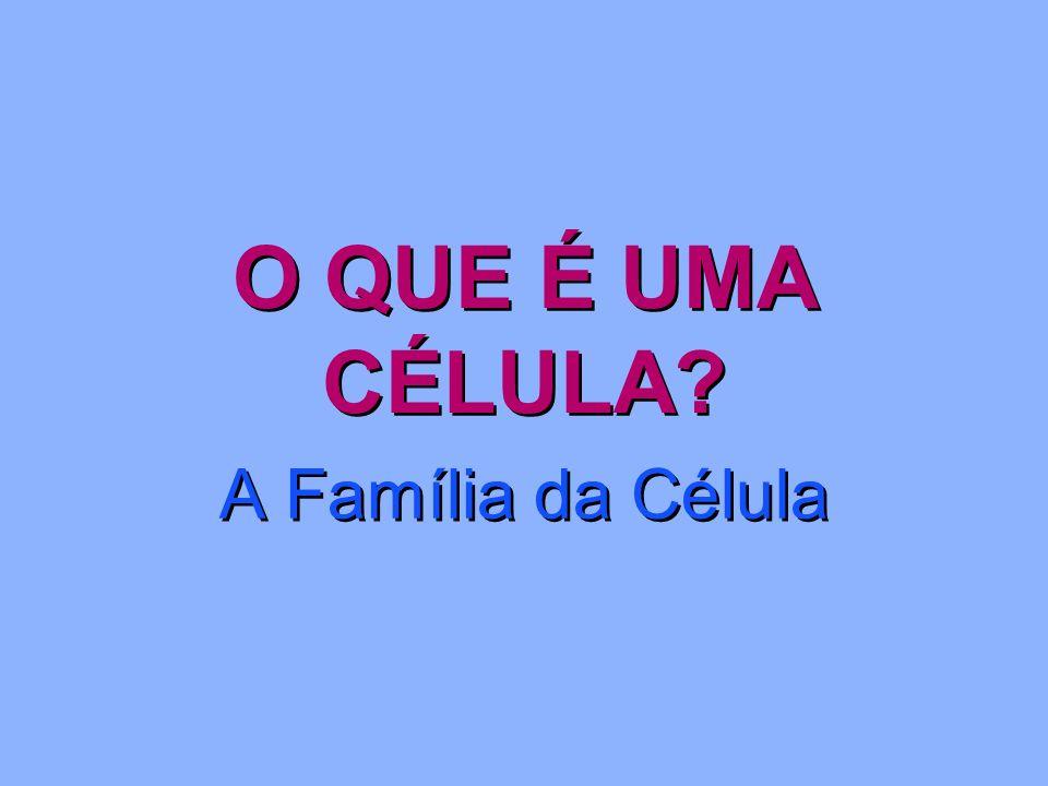 O QUE É UMA CÉLULA A Família da Célula
