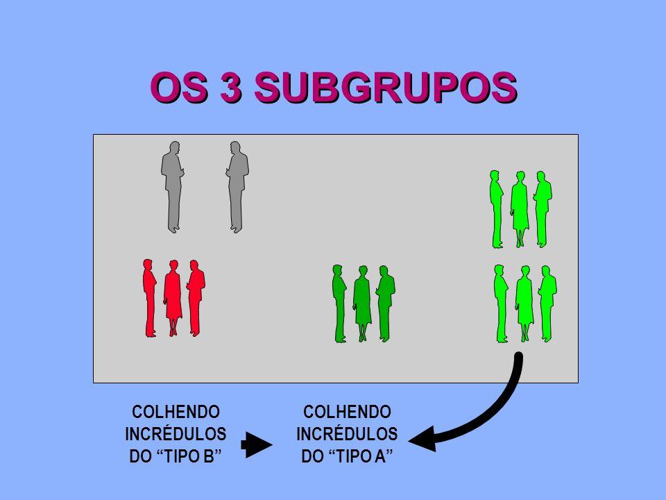 OS 3 SUBGRUPOS COLHENDO INCRÉDULOS DO TIPO B COLHENDO INCRÉDULOS