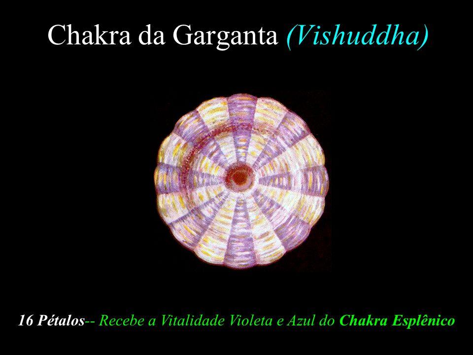 Chakra da Garganta (Vishuddha)