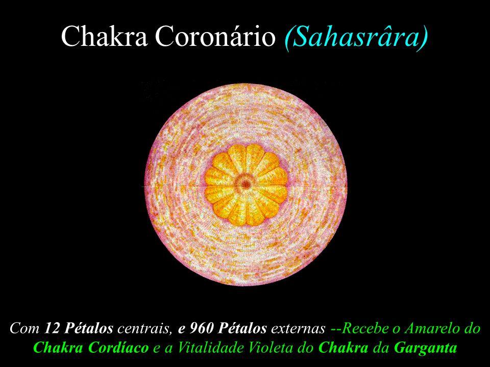 Chakra Coronário (Sahasrâra)