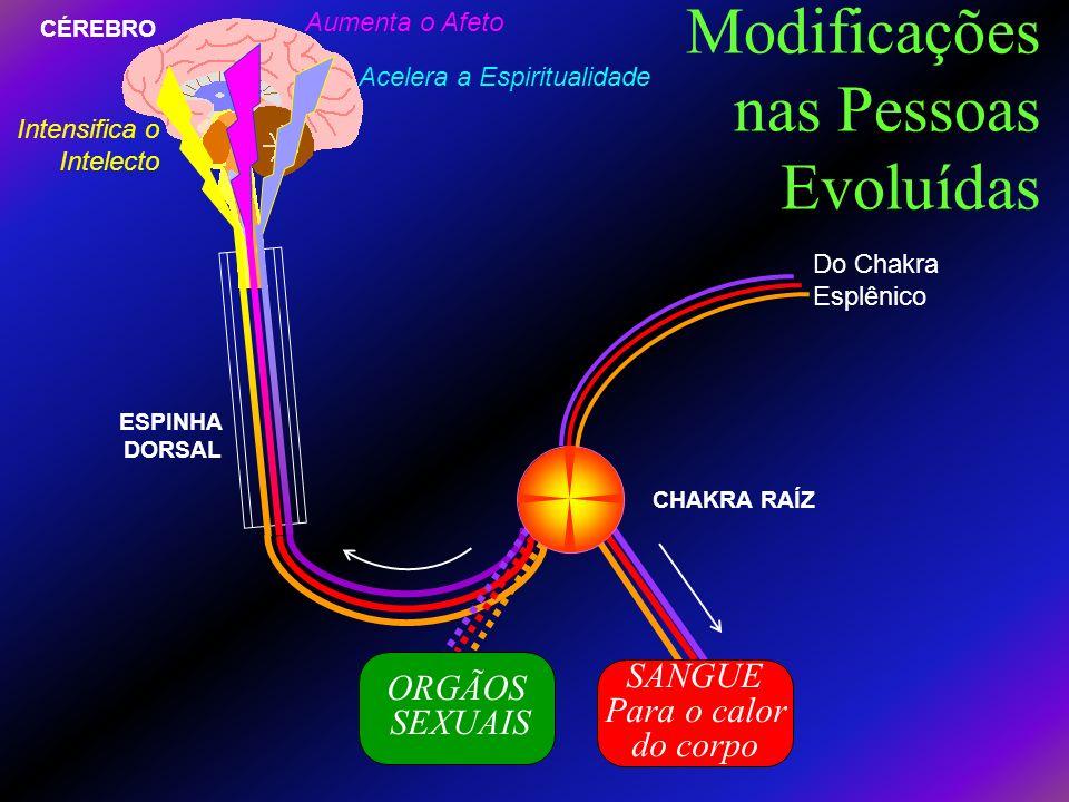 Modificações nas Pessoas Evoluídas