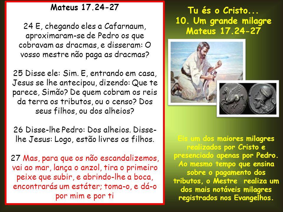 Tu és o Cristo... 10. Um grande milagre Mateus 17.24-27