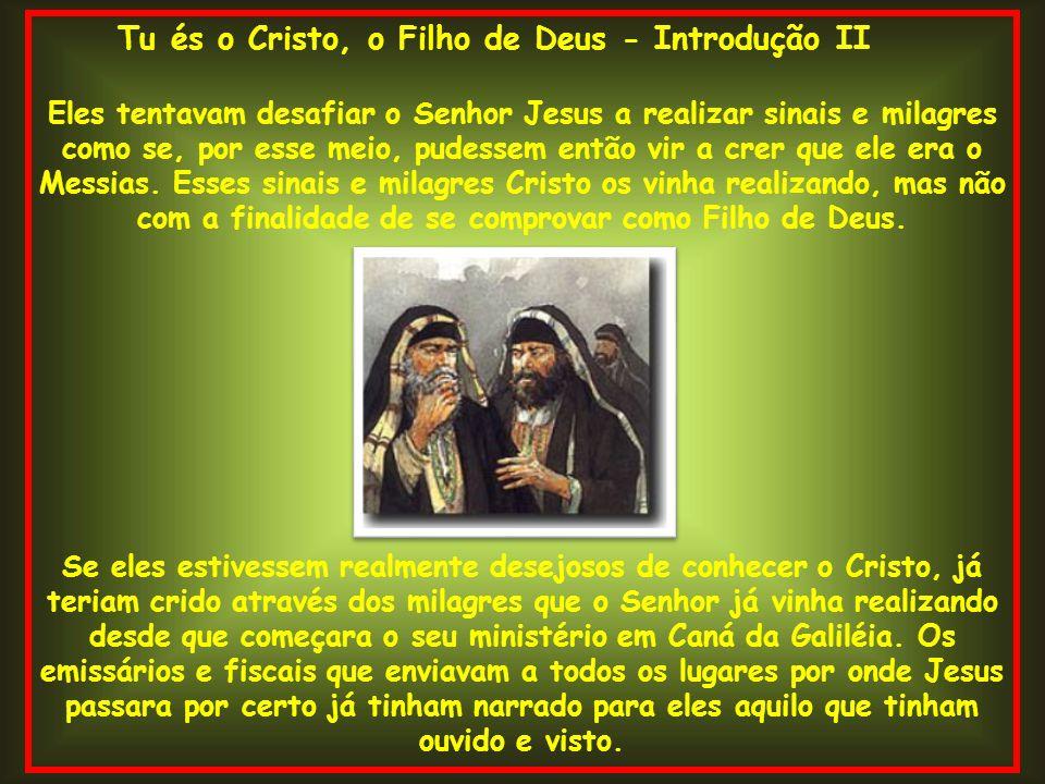 Tu és o Cristo, o Filho de Deus - Introdução II