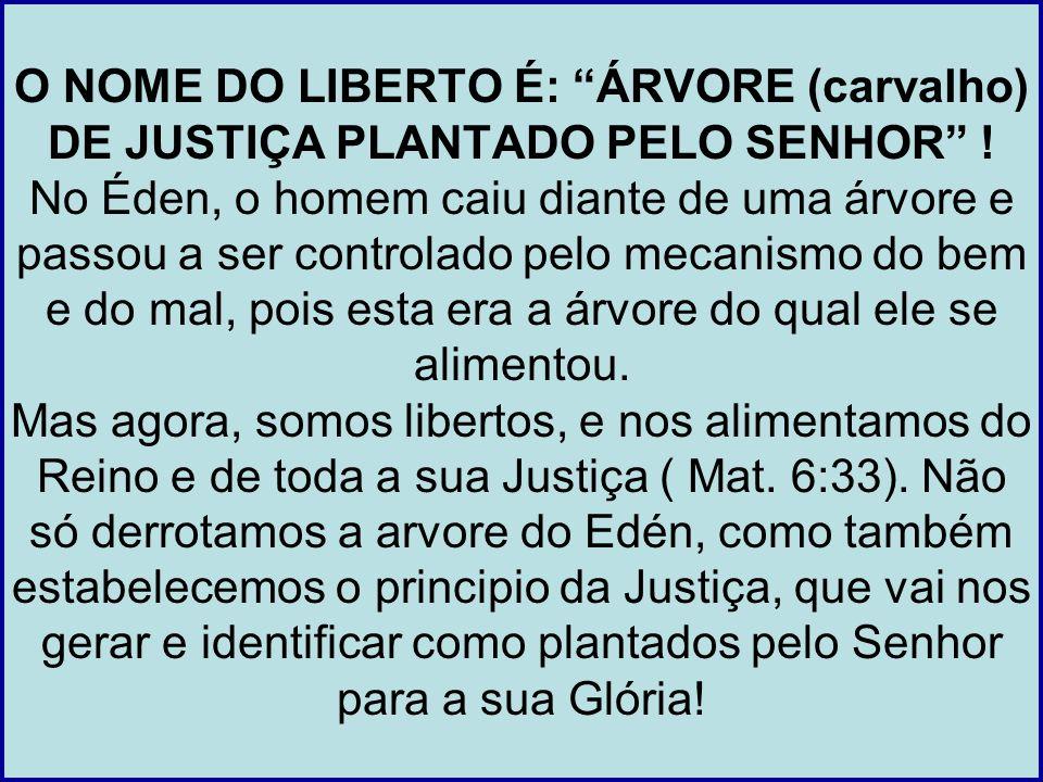 O NOME DO LIBERTO É: ÁRVORE (carvalho) DE JUSTIÇA PLANTADO PELO SENHOR .