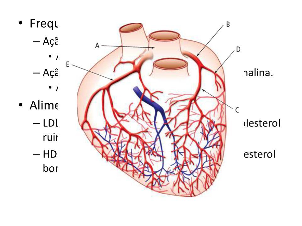 Frequência cardíaca: Alimentação: Ação do sistema nervos.