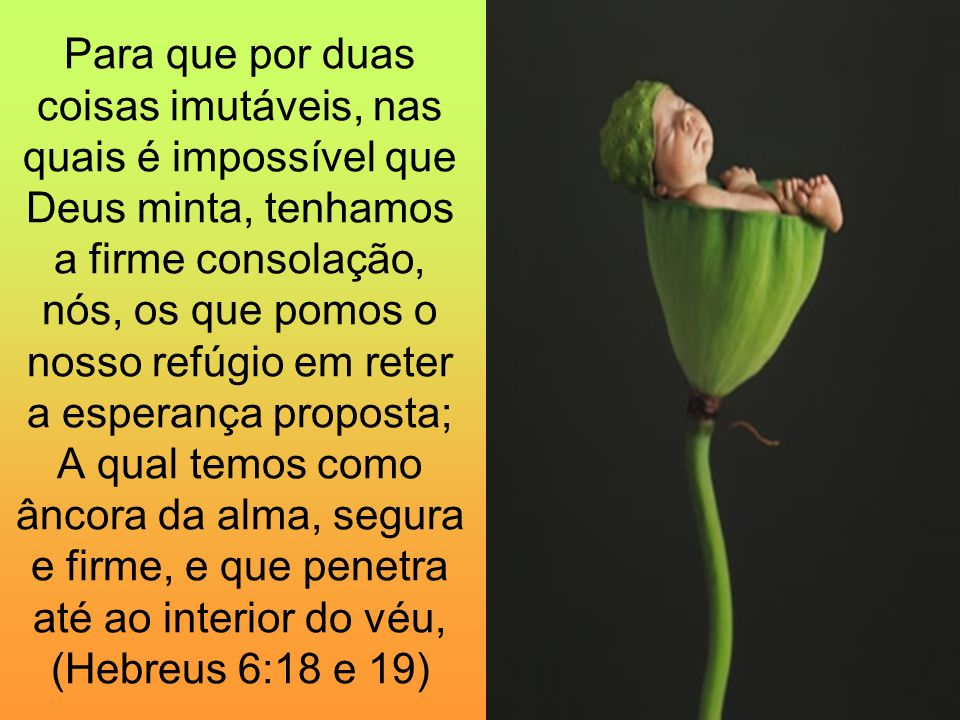 Para que por duas coisas imutáveis, nas quais é impossível que Deus minta, tenhamos a firme consolação, nós, os que pomos o nosso refúgio em reter a esperança proposta; A qual temos como âncora da alma, segura e firme, e que penetra até ao interior do véu, (Hebreus 6:18 e 19)