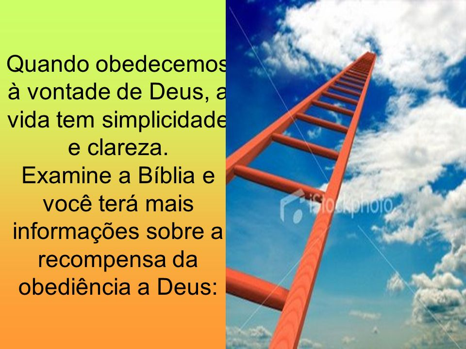 Quando obedecemos à vontade de Deus, a vida tem simplicidade e clareza