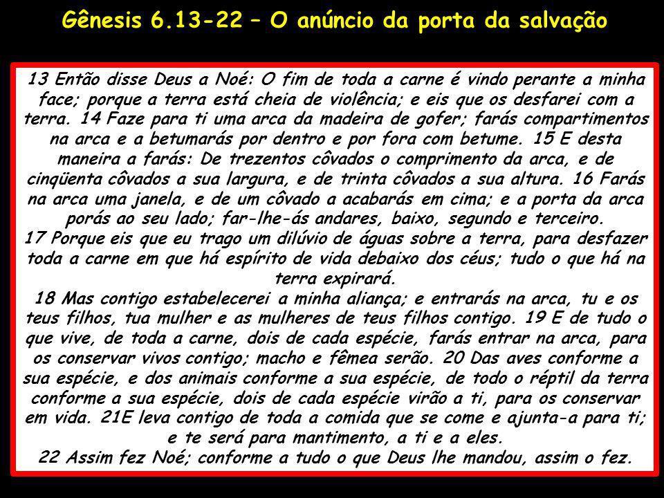 Gênesis 6.13-22 – O anúncio da porta da salvação