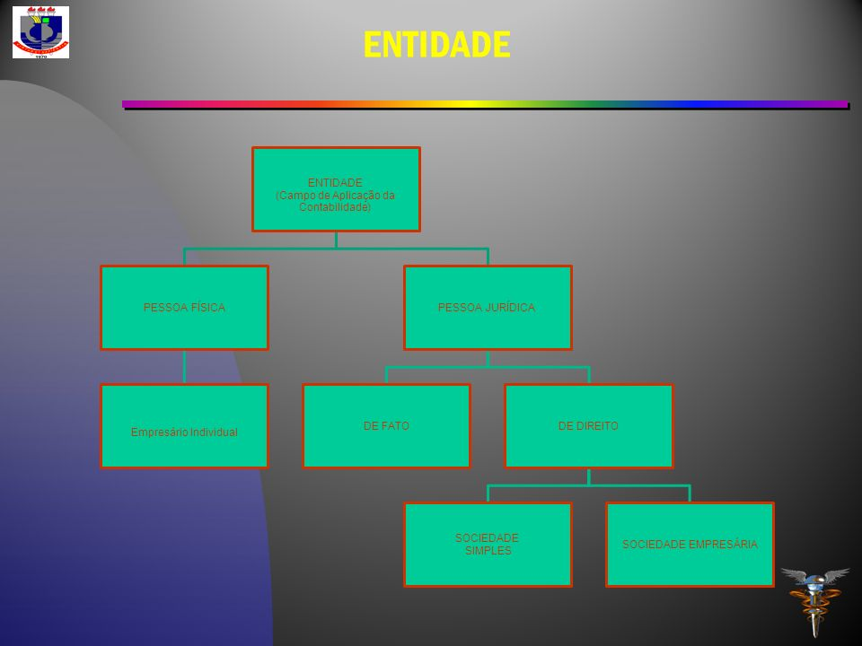 ENTIDADE (Campo de Aplicação da Contabilidade) ENTIDADE PESSOA FÍSICA