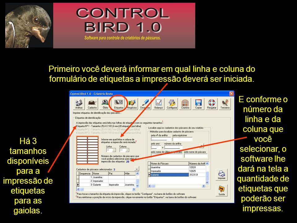 Primeiro você deverá informar em qual linha e coluna do formulário de etiquetas a impressão deverá ser iniciada.