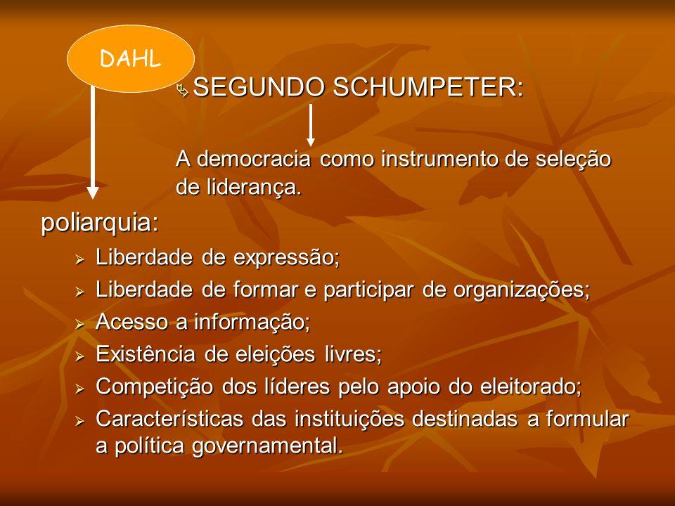 A democracia como instrumento de seleção de liderança. poliarquia: