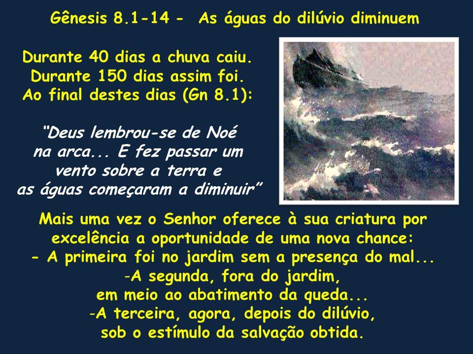 Gênesis 8.1-14 - As águas do dilúvio diminuem