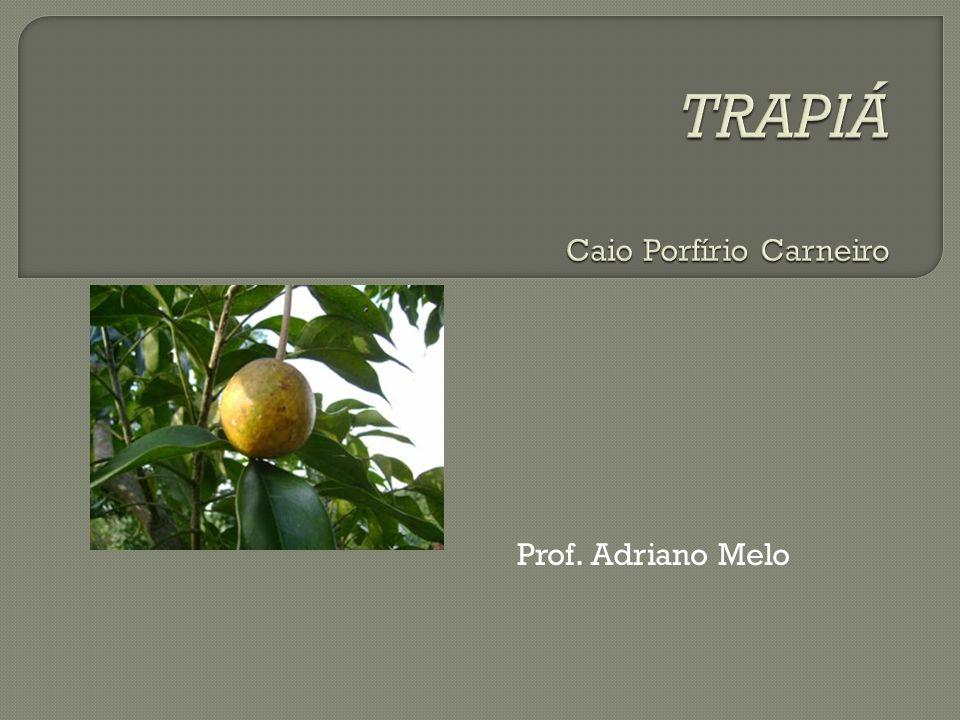 TRAPIÁ Caio Porfírio Carneiro