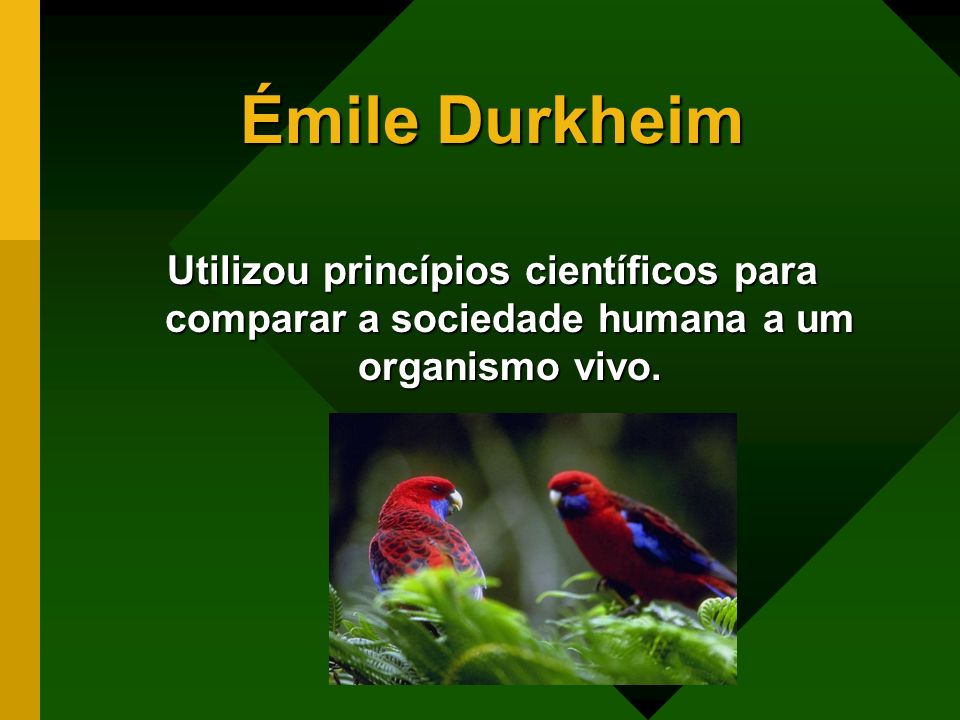 Émile DurkheimUtilizou princípios científicos para comparar a sociedade humana a um organismo vivo.