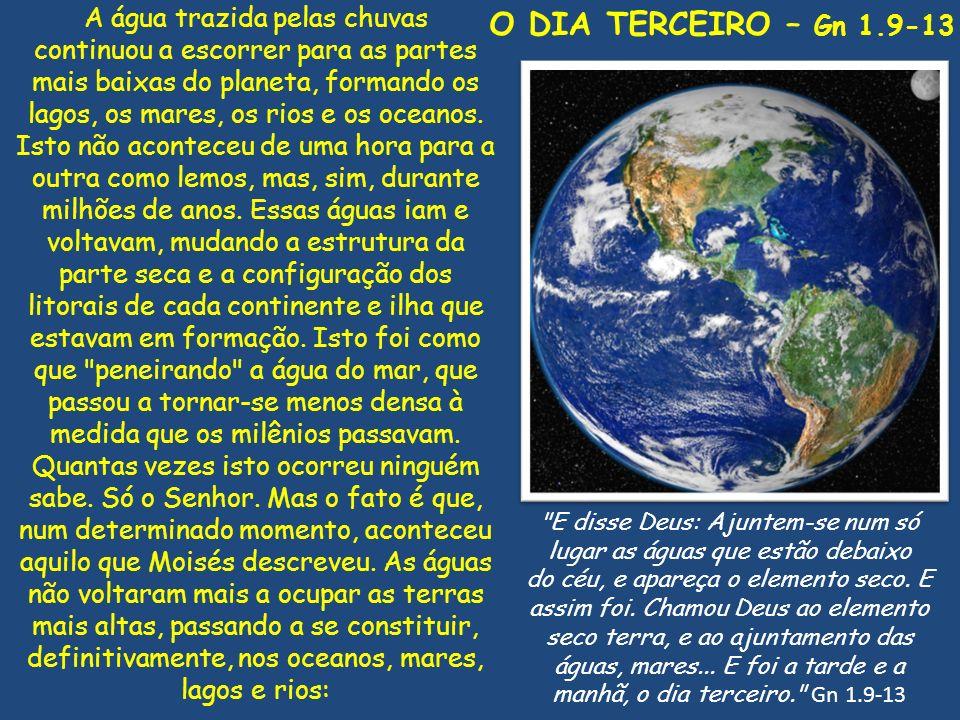O DIA TERCEIRO – Gn 1.9-13 A água trazida pelas chuvas