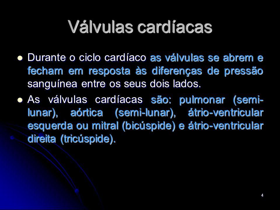 Válvulas cardíacas Durante o ciclo cardíaco as válvulas se abrem e fecham em resposta às diferenças de pressão sanguínea entre os seus dois lados.