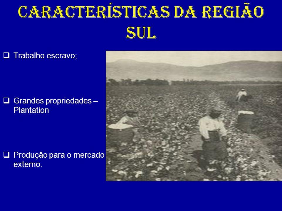 CARACTERÍSTICAS DA REGIÃO SUL