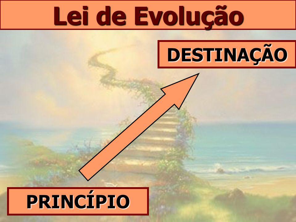 Lei de Evolução DESTINAÇÃO PRINCÍPIO