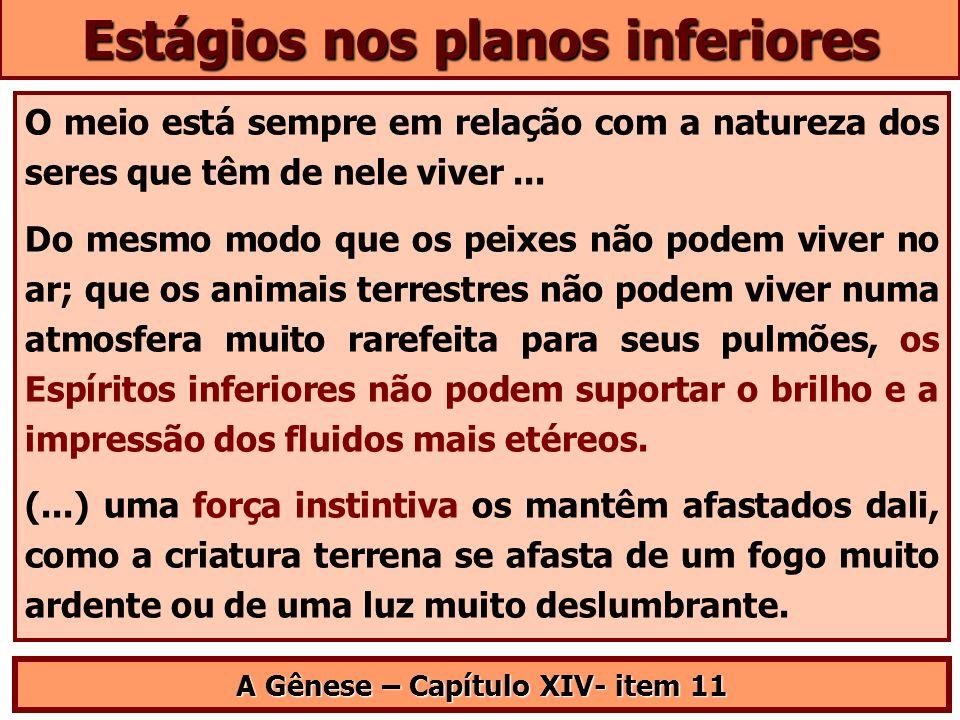 Estágios nos planos inferiores A Gênese – Capítulo XIV- item 11