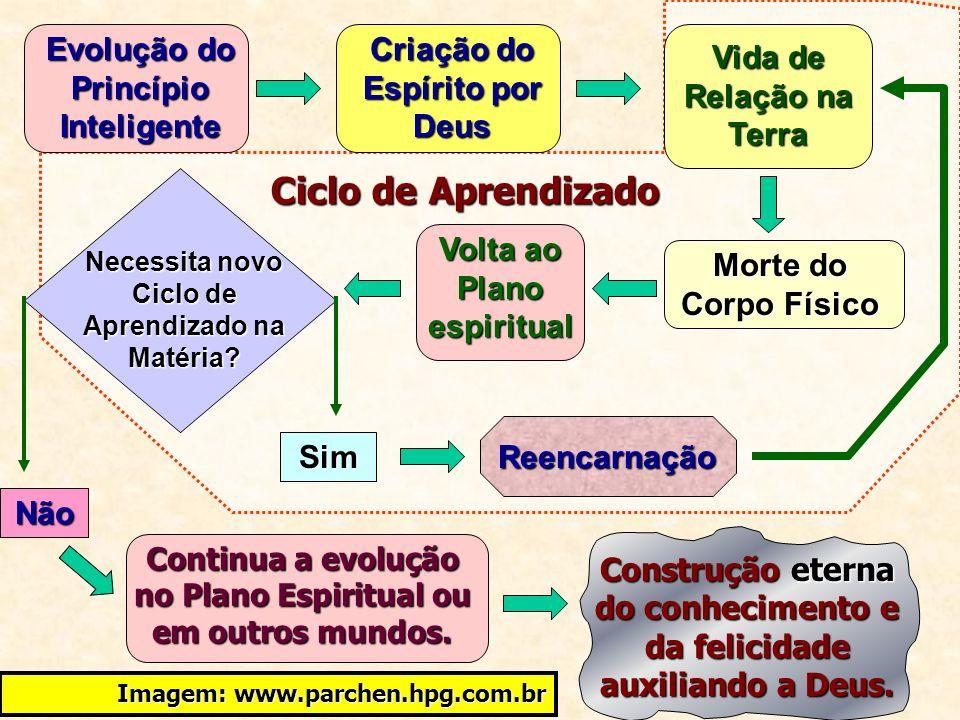 Ciclo de Aprendizado Evolução do Princípio Inteligente