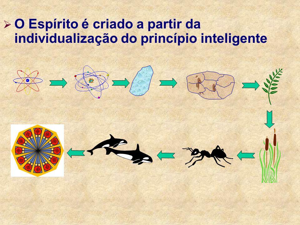O Espírito é criado a partir da individualização do princípio inteligente