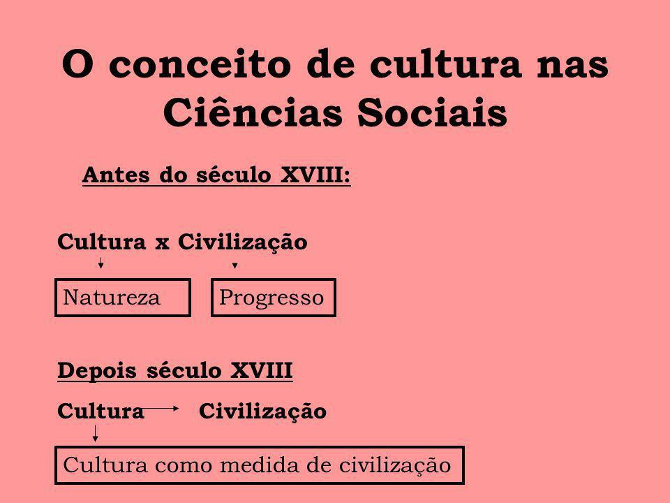 O conceito de cultura nas Ciências Sociais