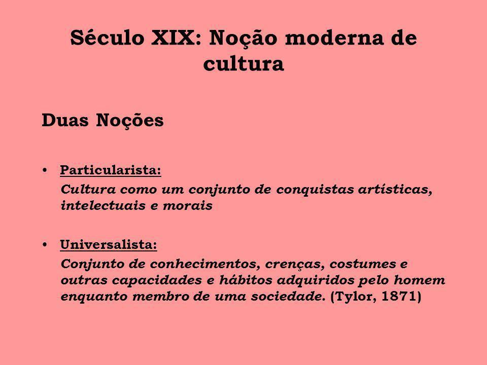 Século XIX: Noção moderna de cultura
