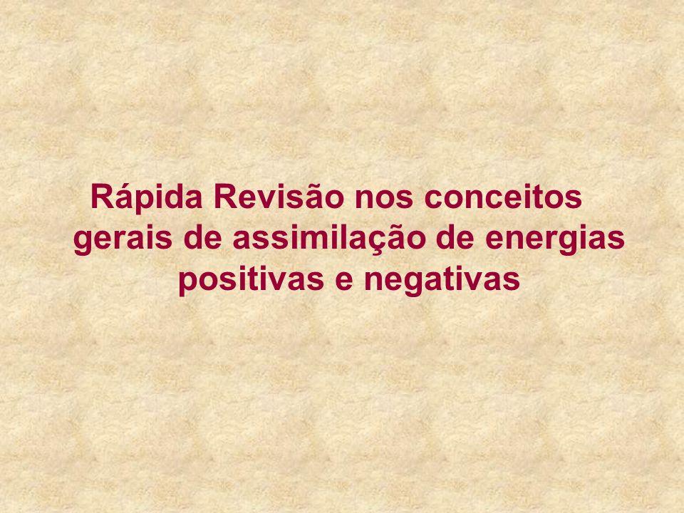 Rápida Revisão nos conceitos gerais de assimilação de energias positivas e negativas
