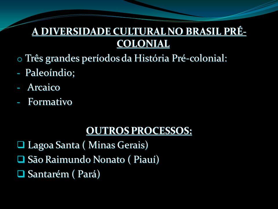 A DIVERSIDADE CULTURAL NO BRASIL PRÉ-COLONIAL