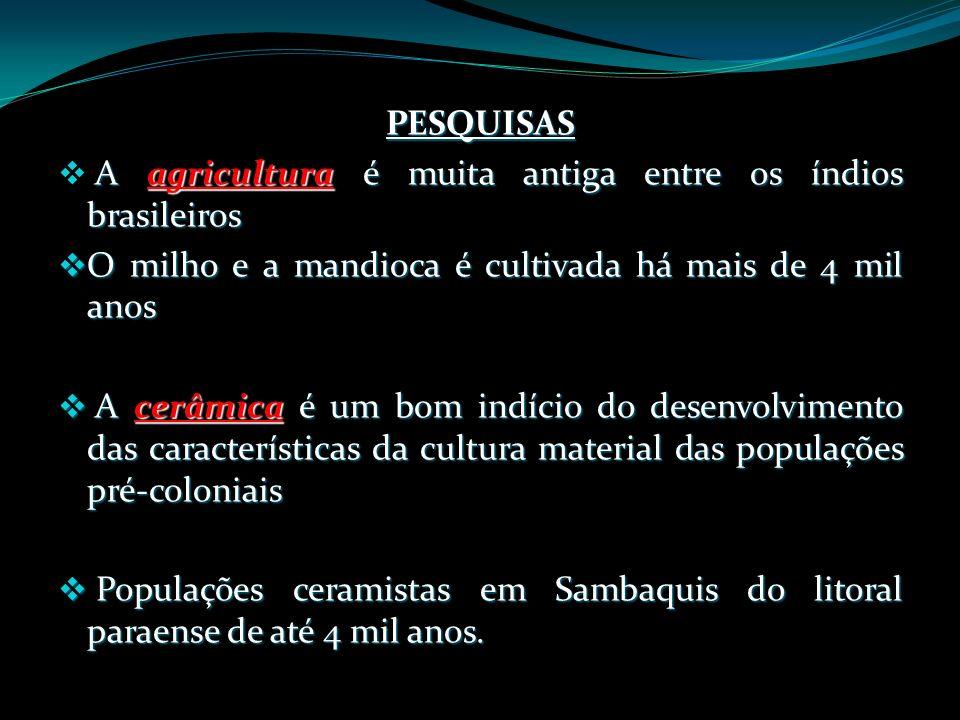 PESQUISAS A agricultura é muita antiga entre os índios brasileiros. O milho e a mandioca é cultivada há mais de 4 mil anos.