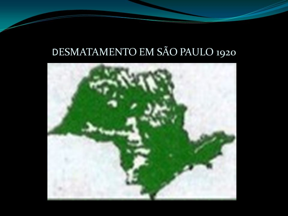 DESMATAMENTO EM SÃO PAULO 1920