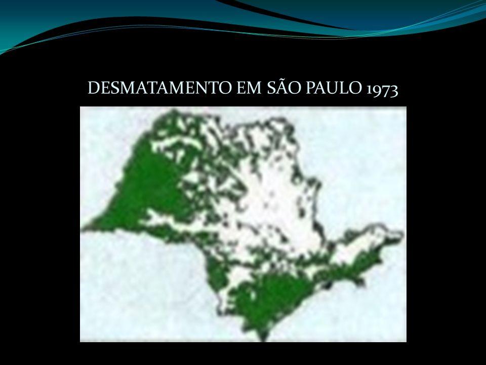 DESMATAMENTO EM SÃO PAULO 1973